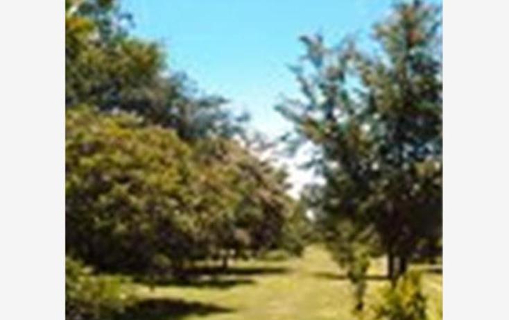 Foto de terreno habitacional en venta en  , alpuyeca, xochitepec, morelos, 1304071 No. 05