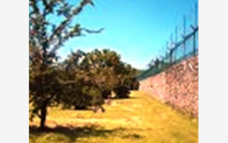 Foto de terreno habitacional en venta en  , alpuyeca, xochitepec, morelos, 1304071 No. 06