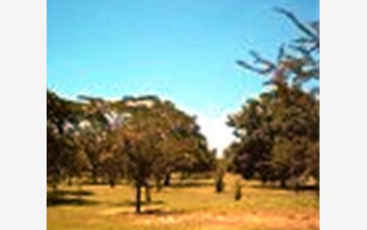 Foto de terreno habitacional en venta en  , alpuyeca, xochitepec, morelos, 1304071 No. 07