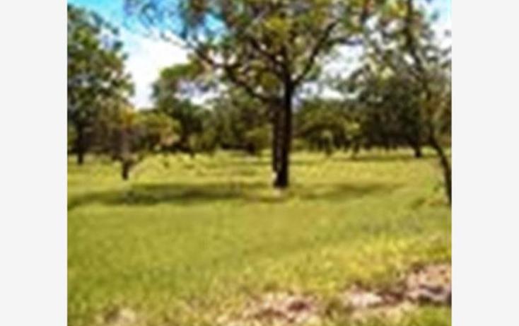 Foto de terreno habitacional en venta en  , alpuyeca, xochitepec, morelos, 1304071 No. 08