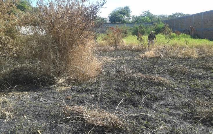 Foto de terreno habitacional en venta en, alpuyeca, xochitepec, morelos, 371209 no 02