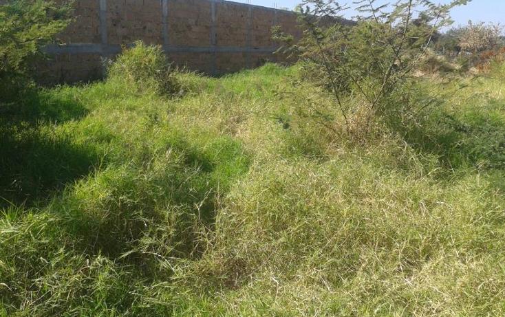Foto de terreno habitacional en venta en  , alpuyeca, xochitepec, morelos, 371209 No. 03