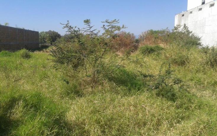 Foto de terreno habitacional en venta en  , alpuyeca, xochitepec, morelos, 371209 No. 04