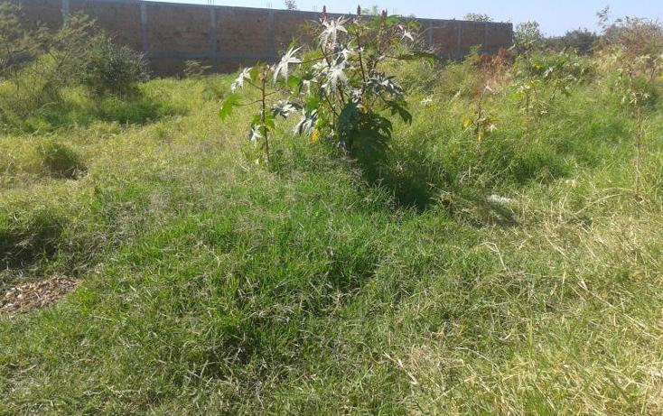 Foto de terreno habitacional en venta en, alpuyeca, xochitepec, morelos, 371209 no 05