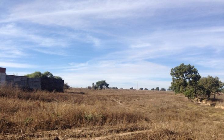 Foto de rancho en venta en  , alta luz, cuapiaxtla, tlaxcala, 1466263 No. 04