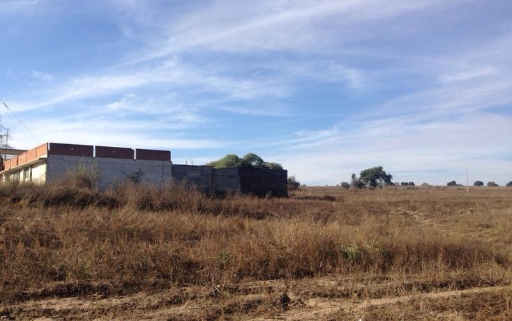 Foto de rancho en venta en  , alta luz, cuapiaxtla, tlaxcala, 1466263 No. 05
