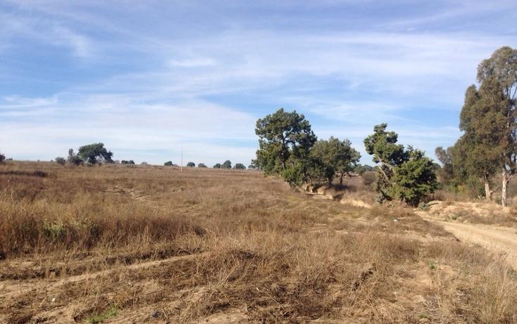 Foto de rancho en venta en  , alta luz, cuapiaxtla, tlaxcala, 1466263 No. 06