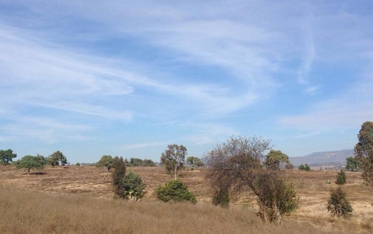 Foto de rancho en venta en  , alta luz, cuapiaxtla, tlaxcala, 1466263 No. 08