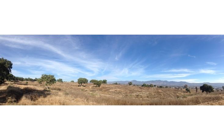 Foto de rancho en venta en  , alta luz, cuapiaxtla, tlaxcala, 1466263 No. 10