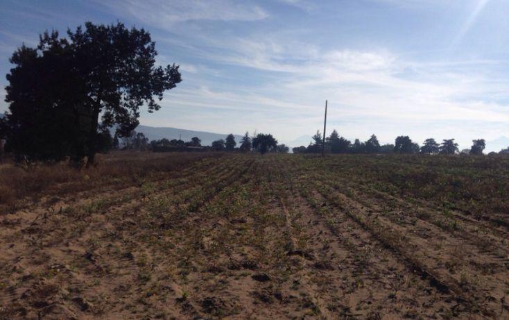 Foto de rancho en venta en, alta luz, cuapiaxtla, tlaxcala, 1466263 no 11
