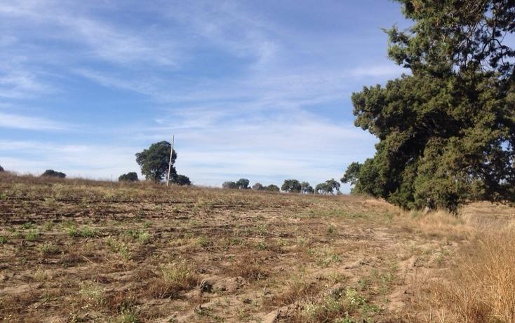 Foto de rancho en venta en  , alta luz, cuapiaxtla, tlaxcala, 1466263 No. 13