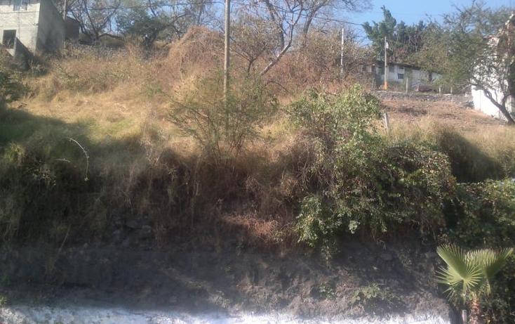 Foto de terreno comercial en venta en  , alta palmira, temixco, morelos, 371473 No. 03
