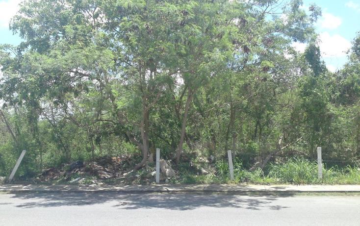 Foto de terreno comercial en venta en  , altabrisa, mérida, yucatán, 1282985 No. 02