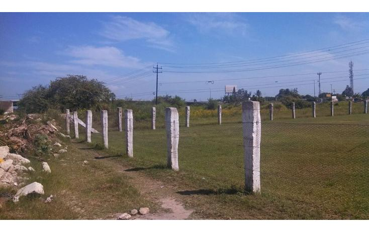 Foto de terreno habitacional en venta en  , altamira, altamira, tamaulipas, 1142053 No. 02