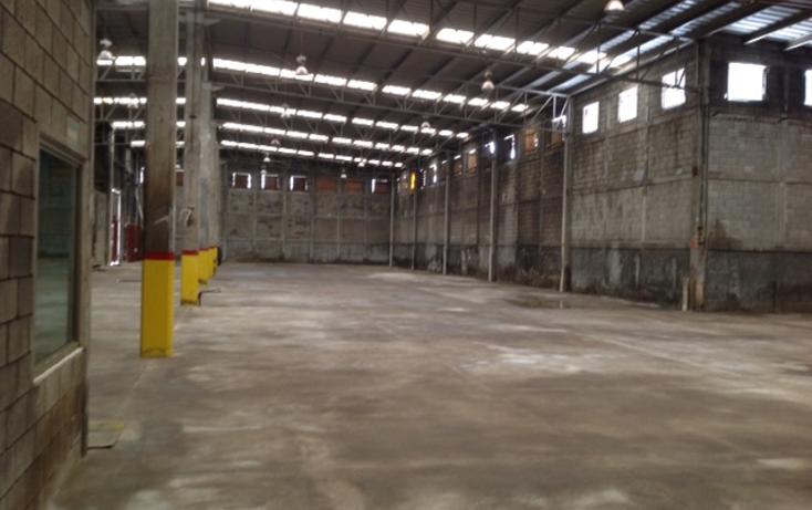 Foto de nave industrial en renta en  , altamira, altamira, tamaulipas, 1293701 No. 09