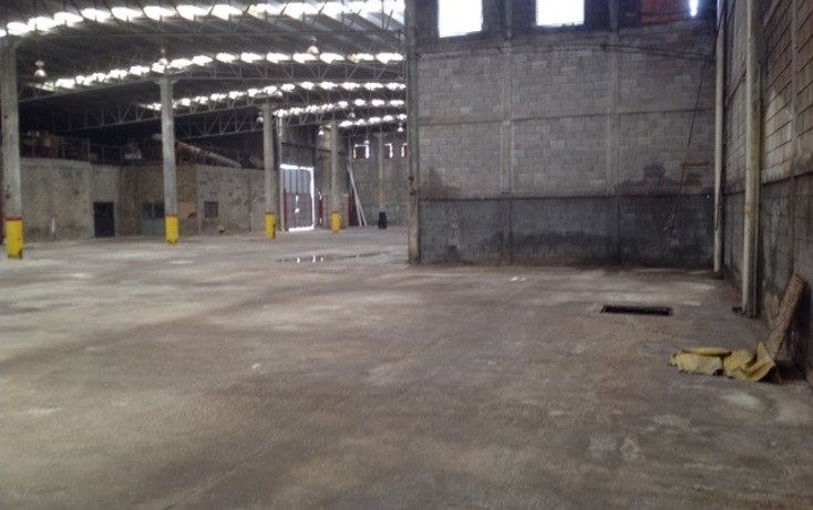 Foto de nave industrial en renta en  , altamira, altamira, tamaulipas, 1293701 No. 11