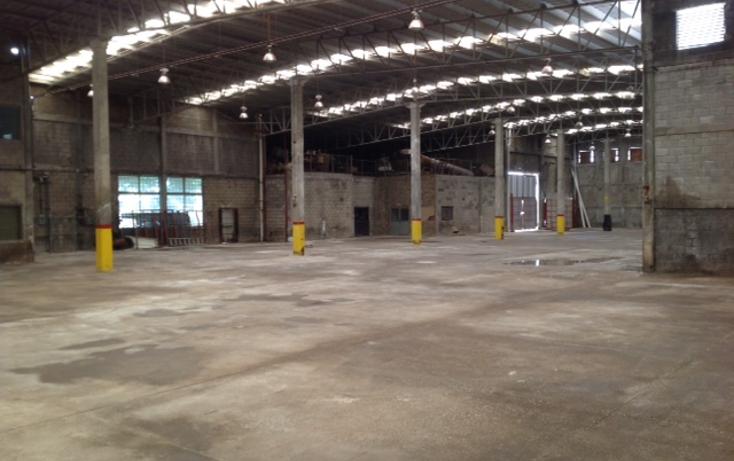 Foto de nave industrial en renta en  , altamira, altamira, tamaulipas, 1293701 No. 12