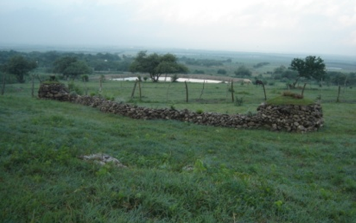 Foto de terreno comercial en venta en  , altamira centro, altamira, tamaulipas, 1068217 No. 01