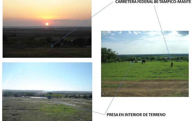 Foto de terreno comercial en venta en  , altamira centro, altamira, tamaulipas, 1068217 No. 09