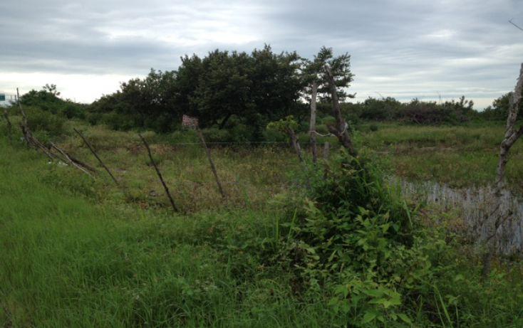Foto de terreno comercial en venta en, altamira centro, altamira, tamaulipas, 1130933 no 04