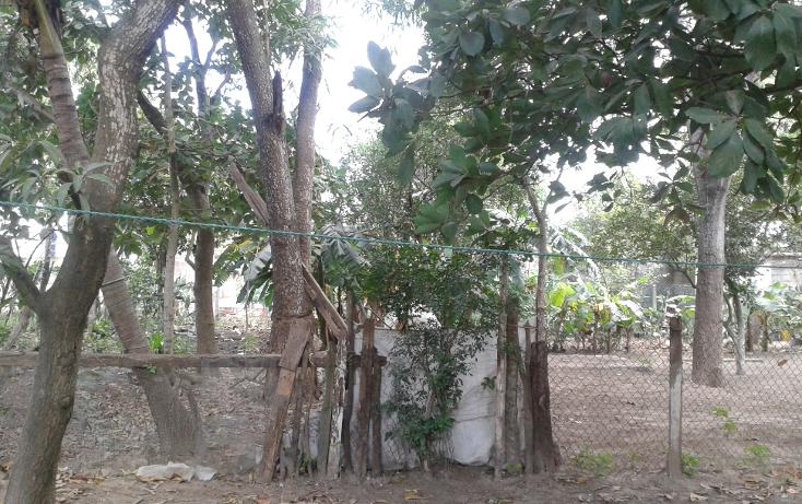 Foto de terreno habitacional en venta en  , altamira centro, altamira, tamaulipas, 1140739 No. 01