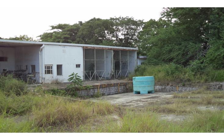 Foto de terreno comercial en renta en  , altamira centro, altamira, tamaulipas, 1419175 No. 03