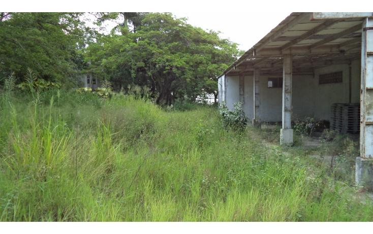 Foto de terreno comercial en renta en  , altamira centro, altamira, tamaulipas, 1419175 No. 05