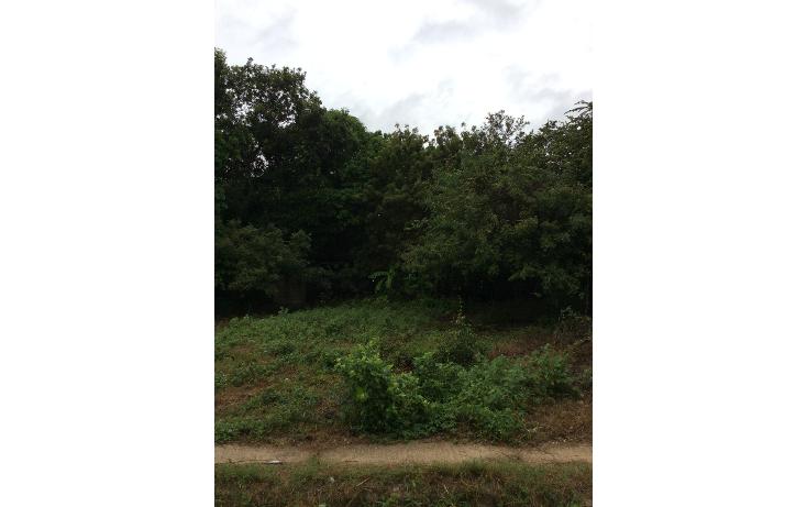 Foto de terreno habitacional en venta en  , altamira centro, altamira, tamaulipas, 1438315 No. 01