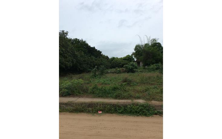 Foto de terreno habitacional en venta en  , altamira centro, altamira, tamaulipas, 1438315 No. 02