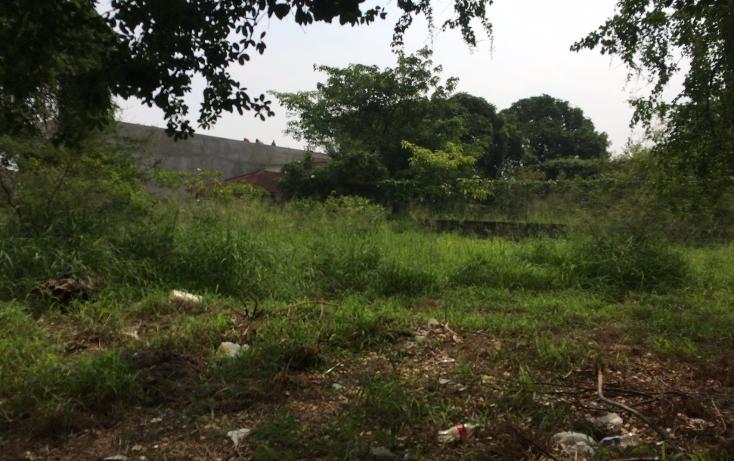 Foto de terreno comercial en renta en  , altamira centro, altamira, tamaulipas, 1496011 No. 01