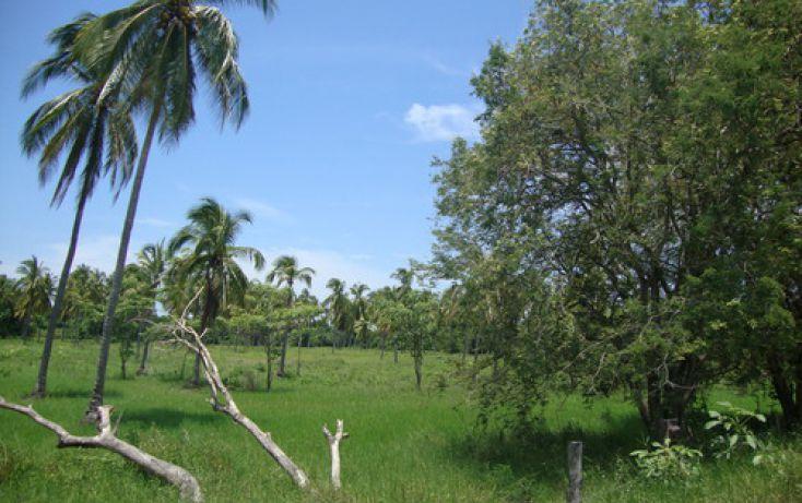 Foto de terreno habitacional en venta en alto de ventura mpio de sn marcos 0, san marcos, cochoapa el grande, guerrero, 1700166 no 01