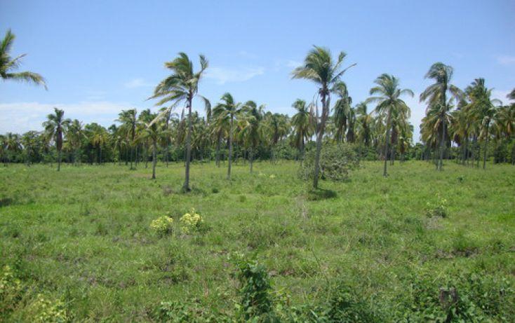 Foto de terreno habitacional en venta en alto de ventura mpio de sn marcos 0, san marcos, cochoapa el grande, guerrero, 1700166 no 04