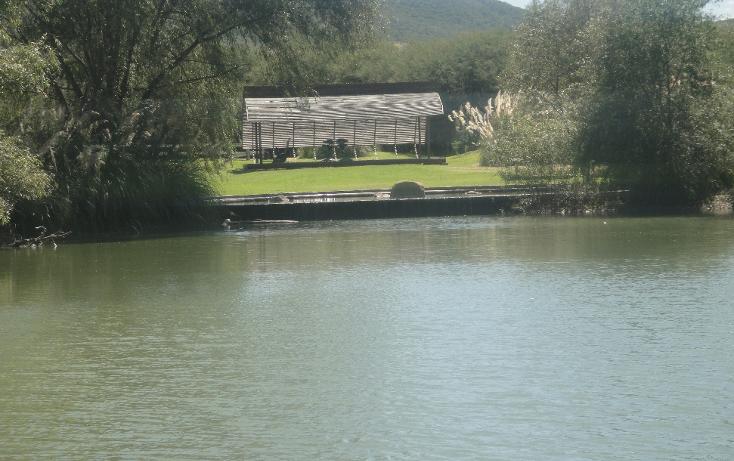 Foto de terreno habitacional en venta en  , alto, huimilpan, quer?taro, 1171275 No. 06