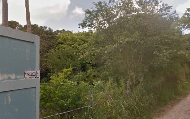 Foto de terreno comercial en venta en  , alto lucero, tuxpan, veracruz de ignacio de la llave, 1787698 No. 06