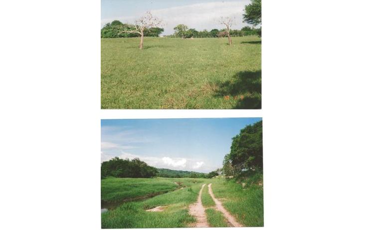 Foto de terreno comercial en venta en  , alto ventura, san marcos, guerrero, 1099501 No. 02
