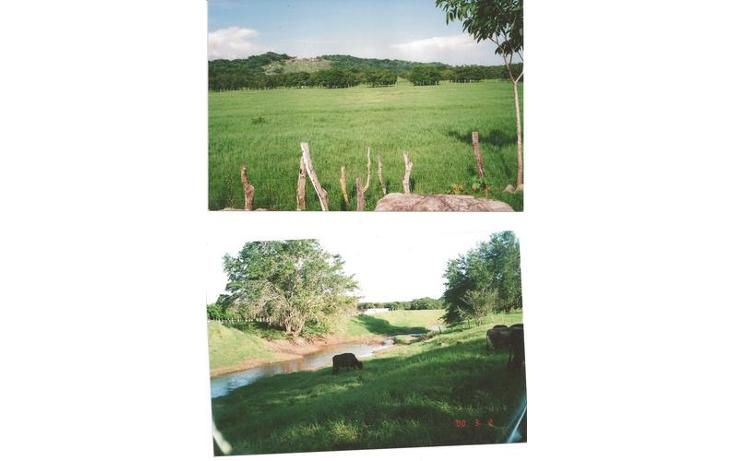 Foto de terreno comercial en venta en  , alto ventura, san marcos, guerrero, 1099501 No. 03
