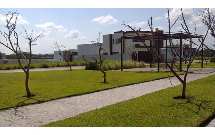 Foto de terreno habitacional en venta en  , alvarado centro, alvarado, veracruz de ignacio de la llave, 1514580 No. 04