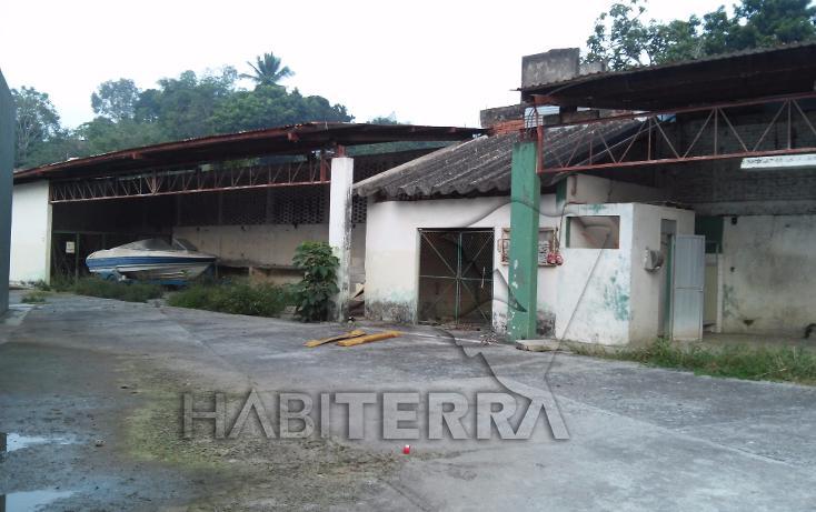 Foto de terreno comercial en renta en  , álvarez, tuxpan, veracruz de ignacio de la llave, 1550870 No. 05
