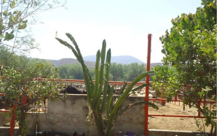 Foto de terreno habitacional en venta en amacuzac 166, tehuixtla, jojutla, morelos, 1656864 no 06
