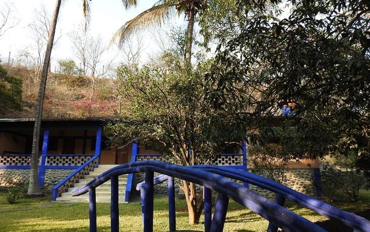 Foto de rancho en venta en  , amacuzac, amacuzac, morelos, 1700020 No. 02