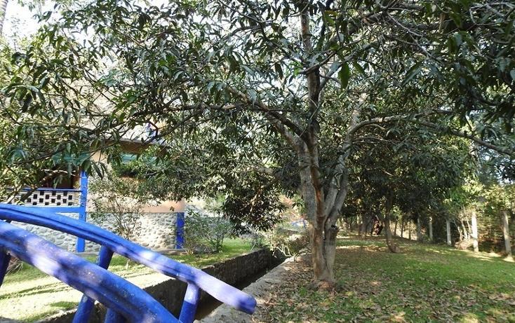 Foto de rancho en venta en  , amacuzac, amacuzac, morelos, 1700020 No. 03