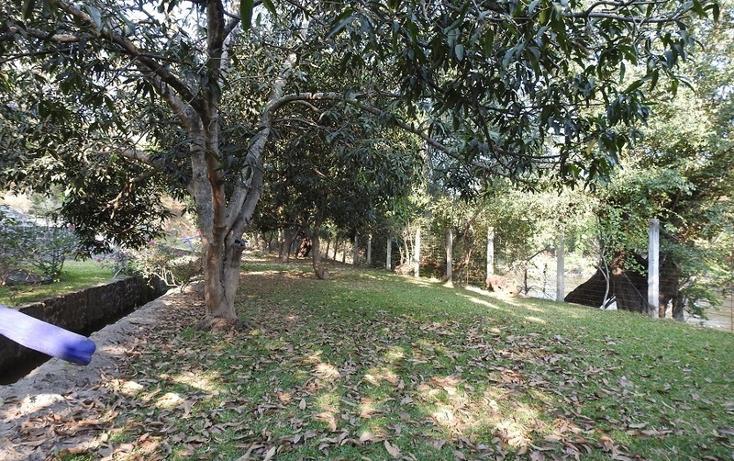 Foto de rancho en venta en  , amacuzac, amacuzac, morelos, 1700020 No. 04