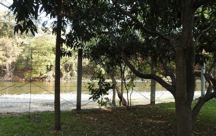 Foto de rancho en venta en  , amacuzac, amacuzac, morelos, 1700020 No. 05