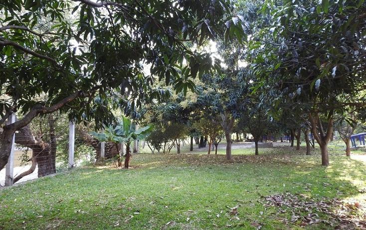 Foto de rancho en venta en  , amacuzac, amacuzac, morelos, 1700020 No. 06