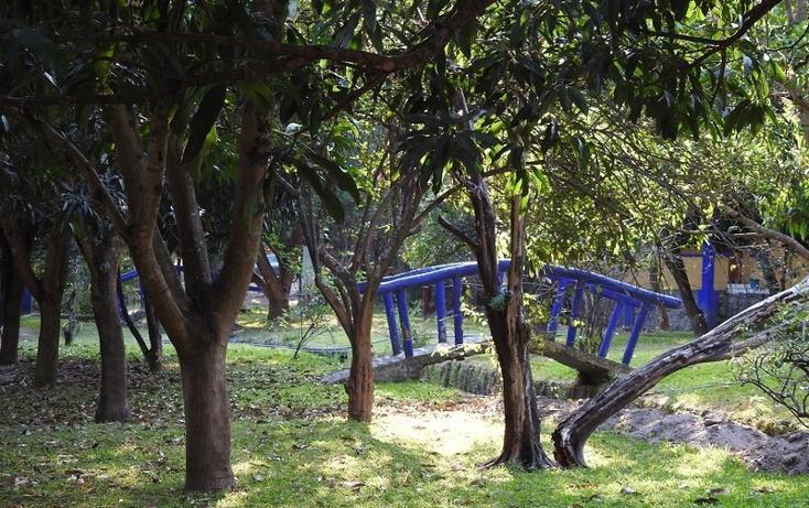 Foto de rancho en venta en  , amacuzac, amacuzac, morelos, 1700020 No. 08