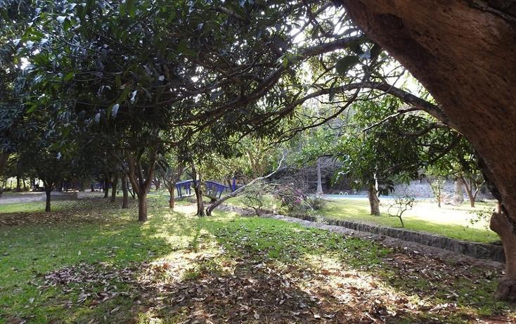 Foto de rancho en venta en  , amacuzac, amacuzac, morelos, 1700020 No. 09