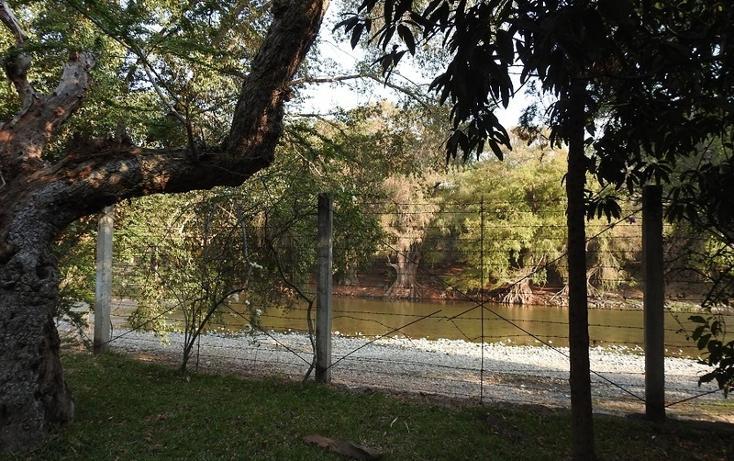 Foto de rancho en venta en  , amacuzac, amacuzac, morelos, 1700020 No. 10
