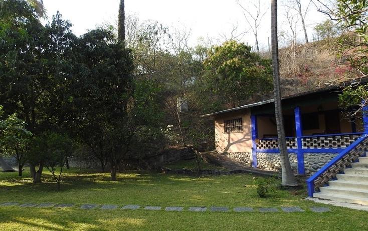 Foto de rancho en venta en  , amacuzac, amacuzac, morelos, 1700020 No. 11