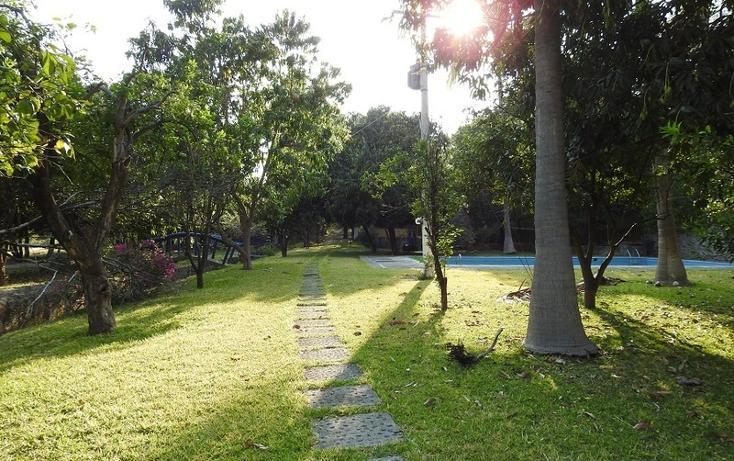 Foto de rancho en venta en  , amacuzac, amacuzac, morelos, 1700020 No. 14