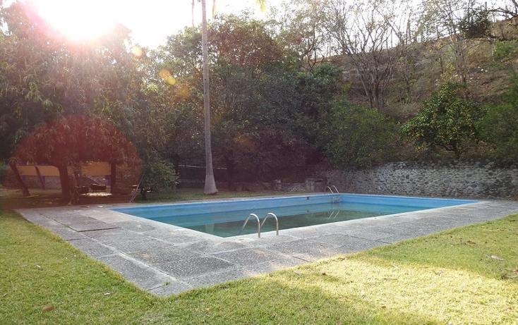 Foto de rancho en venta en  , amacuzac, amacuzac, morelos, 1700020 No. 15